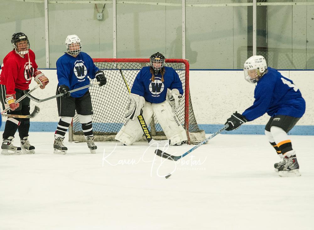 Lakes Region Womens Hockey Club at Laconia Ice Arena.  Karen Bobotas for the Laconia Daily Sun