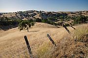 View near Amador City, Amador County, California