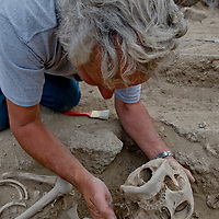 Smithsonian archaeologist & forensics specialist, Dr. Bruno Frohlich, unearths a bronze-age skeleton at an archaeology site above the Delger River near Muren, Mongolia. This  Skeleton may be 2700+ years old.
