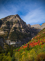 2012 Utah Fall colors along the Wasatch Front in Utah.  The Wasatch Mountains are on fire with color in the Fall. Utah Fall Colors on Mount Timpanogos Alpine Loop