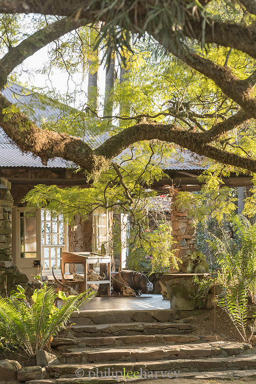 View of Reillys Rock Hilltop Lodge with steps in forest, Mlilwane Wildlife Sanctuary, Eswatini
