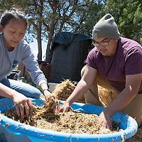 LaFrenda Yazzie, 20, left, Darrell Yazzie Jr., 25, mix the Johnson Su compost for storage at the Spirit Farm in Vanderwagon Friday.