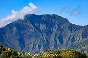 Namolokama mountain, with waterfalls, in Hanalei National Wildlife Refuge, as seen from Princeville, Kauai, Hawaii, Hawaiian Islands, U.S.A.
