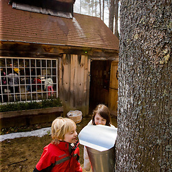 Two kids check out a sap bucket at Folsom's Sugar House in Chester, New Hampshire.  Steam rises from boiling sap in the sugar house.