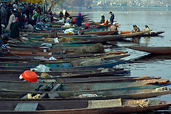 On a sunny day boats are moored  in Dal lake in Srinagar, the summer capital of Indian controlled Kashmie, India, Friday 16 November 2018. (Masrat Zahra/ZUMA Press)