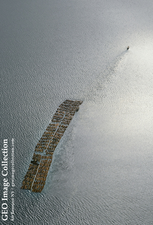 Aerial of logs being pulled across Clarence Strait to a pulp mill.