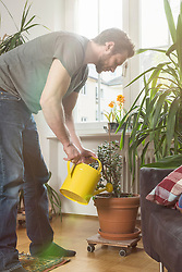 Mid adult man watering plants in living room, Munich, Bavaria, Germany