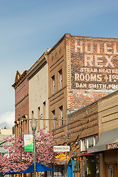 """""""Downtown Truckee 18"""" - Photograph of brick buildings in historic Downtown Truckee, California with a blossoming crabapple tree in the foreground."""