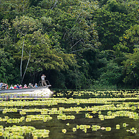 A Lindblad Expeditions skiff motors on the Yanayacu River while a naturalist scans for wildlife in the headwaters of the Amazon River in Peru's Pacaya-Samiria National Reserve.