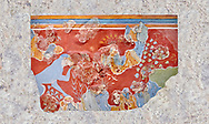 Minoan 'Blue Monkey' wall art fresco from the 'House of Frescoes' Knossos Palace, 1600-1500 BC. Heraklion Archaeological Museum. .<br /> <br /> If you prefer to buy from our ALAMY PHOTO LIBRARY  Collection visit : https://www.alamy.com/portfolio/paul-williams-funkystock/minoan-art-artefacts.html . Type -   Heraklion   - into the LOWER SEARCH WITHIN GALLERY box. Refine search by adding background colour, place, museum etc<br /> <br /> Visit our MINOAN ART PHOTO COLLECTIONS for more photos to download  as wall art prints https://funkystock.photoshelter.com/gallery-collection/Ancient-Minoans-Art-Artefacts-Antiquities-Historic-Places-Pictures-Images-of/C0000ricT2SU_M9w