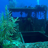 Upper Deck and Wheelhouse, Doc Paulson, Grand Cayman
