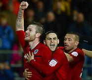 Cardiff City v Crystal Palace 261212