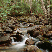Mountain stream in the White Mountain National Forest, New Hampshire