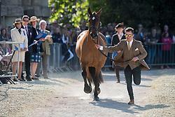Hobday Ben, (GBR), Mulrys Error<br /> CCI4* - Mitsubishi Motors Badminton Horse Trials 2016<br /> © Hippo Foto - Jon Stroud<br /> 06/05/16