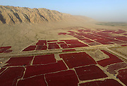 BAYINGOLIN, CHINA - OCTOBER 10: (CHINA OUT) <br /> <br /> Fields of Red Peppers Dry Under Sunshine<br /> <br /> People dry red peppers on the Yanqi Basin aside of Huola Mountain on October 10, 2015 in Bayingolin Mongol Autonomous Prefecture, Xinjiang Uygur Autonomous Region of China. Over 40,000 mu (about 266.67 square kilometers) red peppers got harvest and were dried under sunshine on the Yanqi Basin in Bayingolin. <br /> ©Exclusivepix Media