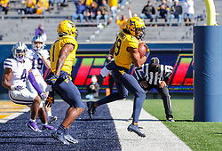 Oct 31, 2020; Morgantown, West Virginia, USA; West Virginia Mountaineers wide receiver Ali Jennings (19) catches a pass for a touchdown during the second quarter against the Kansas State Wildcats at Mountaineer Field at Milan Puskar Stadium. Mandatory Credit: Ben Queen-USA TODAY Sports