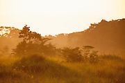 Misty sunrise scene, Lekoli River.