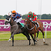 Wyndham Wave and P Millman winning the 6.20 race