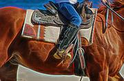 Horses on beach in Charlestown, Rhode Island.