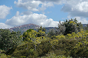Landscape near Palermo, Sicily, Italy