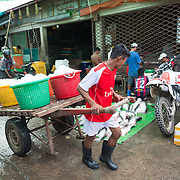 A man uses a cart to delivery buckets of ice to the fish merchants at the fish and flower market in Mandalay, Myanmar (Burma).