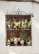 Historic whitewashed house detail of plants in window frame Albaicin district, Granada, Spain