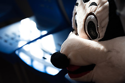 16 February 2020, Irbid, Jordan: A large Mickey Mouse toy sits on a chair in the Lutheran World Federation community centre in Irbid.