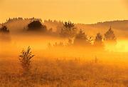 Fog at sunrise at Hannah Lake<br /> Sudbury<br /> Ontario<br /> Canada