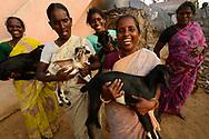 "Womens' Self Help group ""Morning Star"", Pulicat Lake, Tamil Nadu, India"