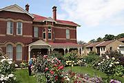 Hobart, Tasmania, Australia. A woman in her garden