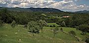 Panorama del Parco di Montevecchia e valle Curone..Landscape of Montevechia park and Curone valley