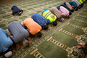 Amin Alsaloum (C in blue plaid), 27, prays with fellow worshipers during Ramadan services at a mosque in Tampa, Florida, U.S. Amin Alsaloum and brother Momen worked part-time at the mosque during the month of Ramadan, directing traffic at peak prayer hours. The mosque proved to be a welcoming community to the Alsaloum family.