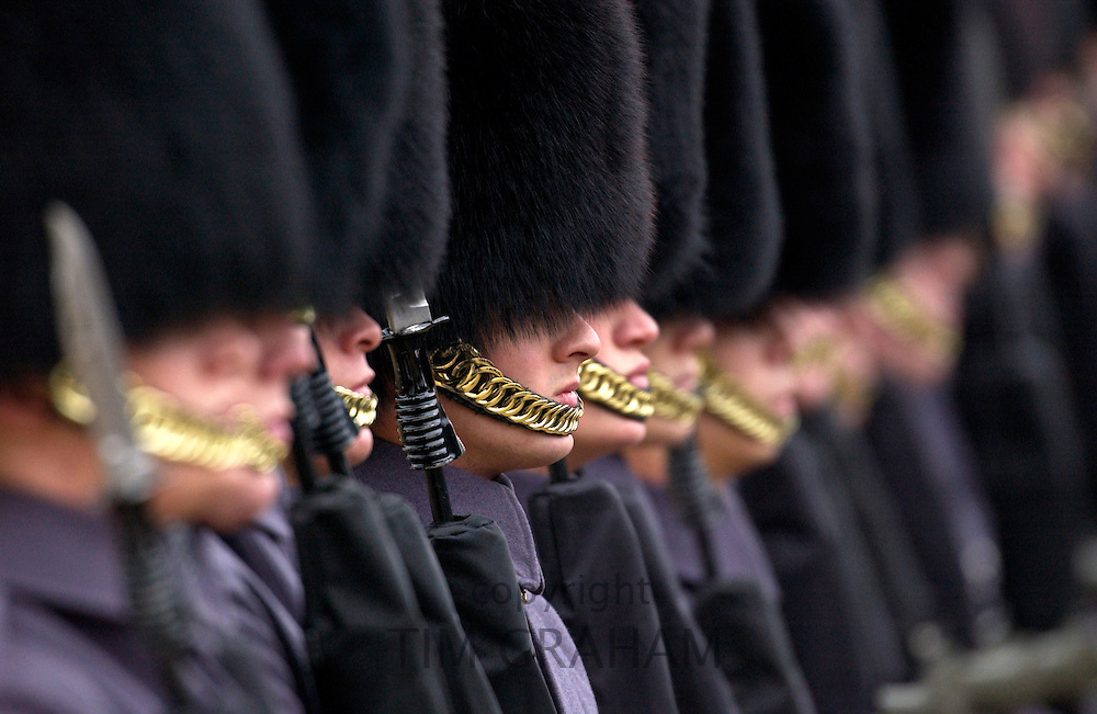 The Household Division Foot Guards standing at attention on parade in London