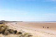 Beach scene people walking dogs at Holkham Beach, a vast sandy beach with sand dunes on North Norfolk coast, UK