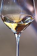 glass of 2004 chateau d'yquem sauternes bordeaux france