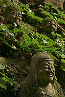 """Monju Senji Temple Moss Covered Jizos - """"Jizo"""" images and statues are popular in Japan as Bodhisattva who console beings awaiting rebirth and travelers. As such they are often found along roadsides, paths or even street corners."""