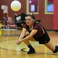 Photo: Jeffery Jones<br /> <br /> Rehoboth Lady Lynx Fiona Martinez (9) digs for the ball