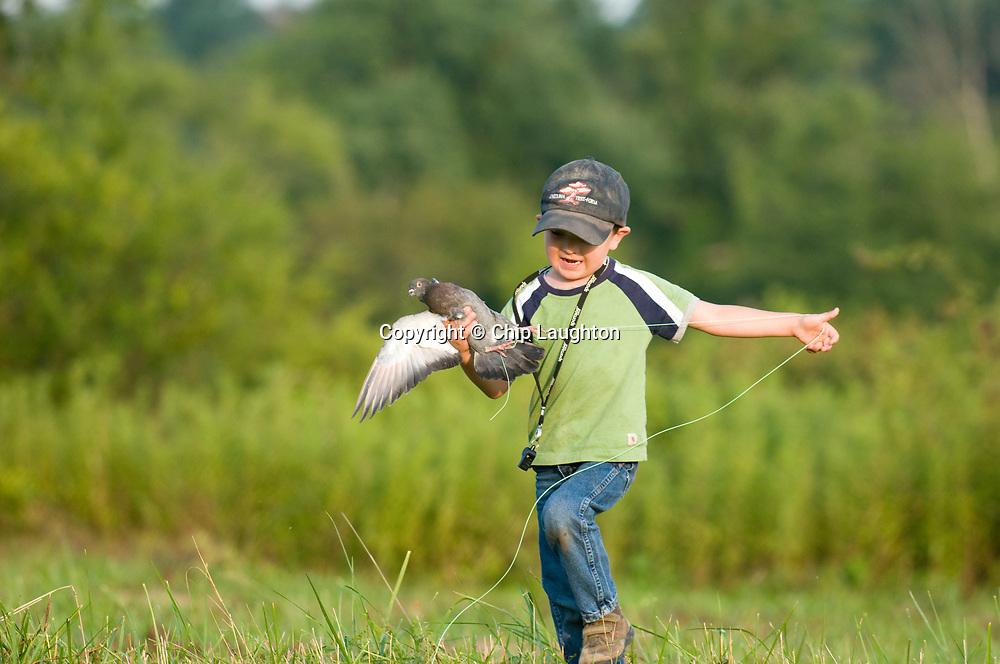 upland hunting stock photo image
