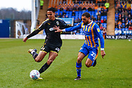 Wimbledon defender Toby Sibbick (20) crosses the ball  during the EFL Sky Bet League 1 match between Shrewsbury Town and AFC Wimbledon at Greenhous Meadow, Shrewsbury, England on 2 March 2019.