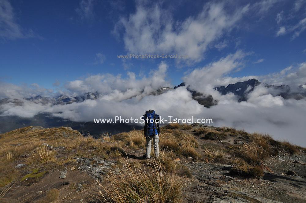 New Zealand, Fiordland Routeburn Track misty mountain Landscape