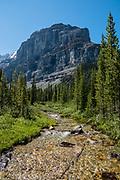 Stanley Glacier Trail, Kootenay National Park, British Columbia, Canada.