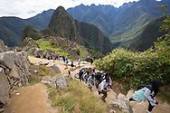 The Frank Ski Kids climb to higher ground as they tour Machu Picchu.