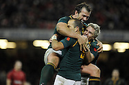 South Africa's Fourie Du Preez (l) celebrates with Jean De Villiers (r) after he scores his try in the 2nd half. Autumn International rugby, 2013 Dove men series, Wales v South Africa at the Millennium Stadium in Cardiff,  South Wales on Saturday 9th November 2013. pic by Andrew Orchard, Andrew Orchard sports photography,