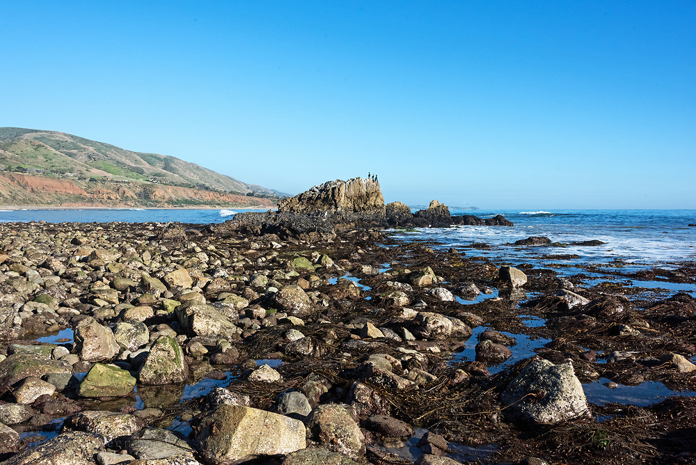 Three cormorants perch on top of a large rock outcrop during low tide at Leo Carrillo State beach, Malibu, California.