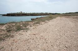 """A 7km da Brindisi, vi è la località Torre Testa, chiamata anticamente Torre Testa di Gallico e, ancora oggi in dialetto brindisino, """"Jaddico"""", dal longobardo wald, foresta; il toponimo è stato anche liberamente interpretato con il gallo. Il promontorio per la sua posizione dominante, avanzata sul mare con una netta sporgenza, usufruendo anche dell'apporto di acque del fiume, oggi Canale Giancola, fu un luogo privilegiato per la presenza dell'uomo. Le prime attestazioni si hanno già nel Paleolitico (12mila anni fa) fino all'Età del Bronzo (XII – IX sec a.C.): gli uomini trovarono un luogo ideale per la loro difesa e nelle pianure circostanti erano dediti alla caccia di animali, uccelli come testimoniano le punte, le lame ed i raschiatoi ivi rinvenuti, pescare molluschi, pesci ma col tempo dediti anche all'agricoltura, pastorizia, tessitura e alla lavorazione dei metalli. <br /> Il sito fu frequentato anche dai Romani, grazie proprio alla presenza del fiumiciattolo che forniva acqua e serviva anche come via di comunicazione: sono stati infatti individuati insediamenti artigianali con fornaci per la produzione di anfore destinate al commercio ed all'esportazione dell'olio e del vino brindisini, datati I sec a.C. – I sec d.C. (scheda)<br /> L'alveo del canale è un'importante zona umida protetta, risulta praticamente invaso dal canneto, specchi d'acqua più o meno ampi, presenti anche ampi tratti di macchia mediterranea. (scheda)<br /> Data la posizione strategica, il promontorio si prestava bene alla costruzione di una torre, detta anche Torre Testa. I lavori, si prolungarono per 15 anni, iniziati nel 1567 ed affidati al maestro muratore brindisino Giovanni Maria Calizzi; nel 1582, saranno conclusi dai leccesi Marco Guarino e Cesare Schero."""