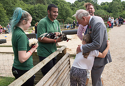 The Prince of Wales receives a hug from eight year old Skye Skillen from Colchester during his visit to Jimmy's Farm in Ipswich where he met the trust's new President, Jimmy Doherty, and learned about the farm's education and rare breeds programme.