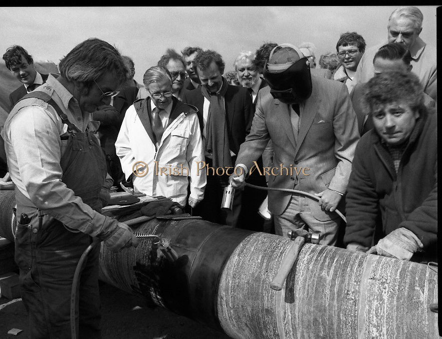 Cork / Dublin Gas Pipeline.28.04.1982.04.28.1982.28th April 1982.1982...At Brownbarn,Kingswood,Dublin the Minister for Industry and Energy, Mr Albert Reynolds T.D. performed the ceremonial first weld to officially start the project..The 24cm diameter pipe is cleaned prior to welding as a worker shows the Minister the procedure.