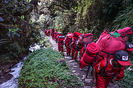 Porters along the Inca Trail have incredible strength and stamina