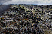 Near Keflavik International Airport on the Reykjanes peninsula, is a dramatic lunar type lava landscape, a landscape so otherworldly that Apollo astronauts came here to learn how to moonwalk.