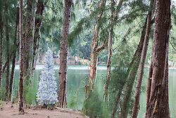 silver artificial Christmas tree in the woods by a lake